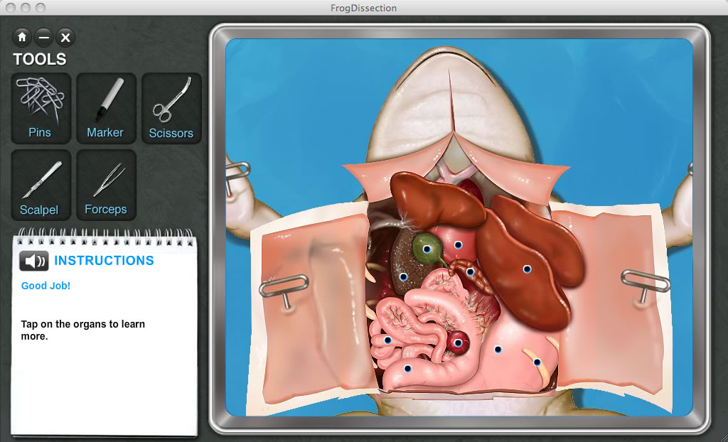 Review Frog Dissection Virtual School Meanderings